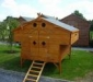 chicken-house-9th-google-images